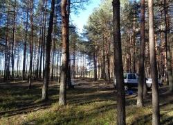 Tynne 5-9.10.2015 Odnaleziona mogiła żołnierzy KOP-2