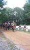 28.09.2012 r. - Wytyczno, 73. rocznica boju pod Wytycznem-23